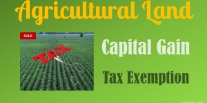 capital-gain-on-sale-of-agricultural-land-income-tax-exemption