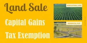 capital-gain-on-sale-of-land-income-tax-exemption